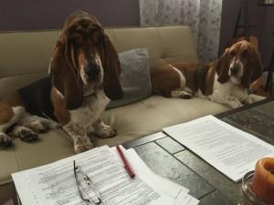 writingpartners